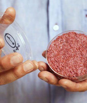 GMO-Beef