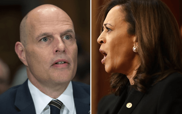Ronald Vitiello & Kamala Harris